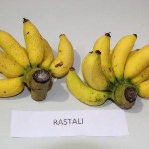 pisang-rastali