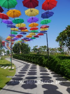 Portugal's Umbrella Sky