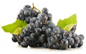 Anggur Black muscat