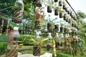 idea menggunakan botol plastik untuk menanam sayur