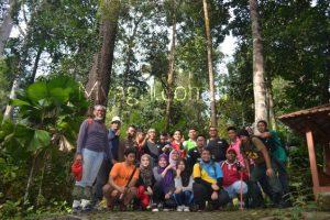 kumpulan ekspedisi