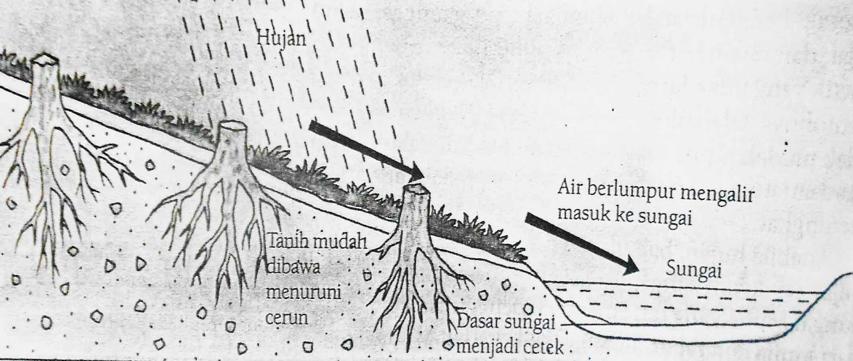 Nitrogen dibawa ke sungai oleh hujan