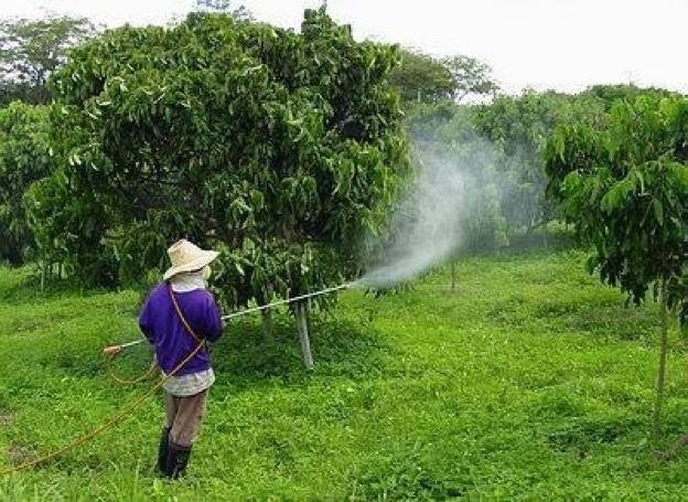 Semburan racun serangga