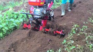 gembur tanah